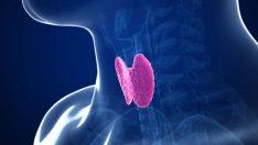 Hipotiroidi Nedir, Çeşitleri ve Hemşirelik Bakımı